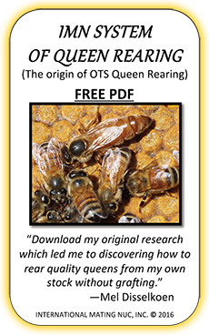 On-The-Spot Queen Rearing